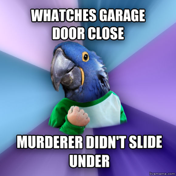 Paranoid Success Parrot whatches garage door close murderer didn t slide under  , made with livememe meme creator