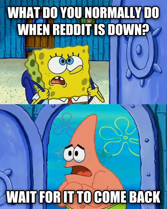 untitled meme what do you normally do when reddit is down? wait for it to come back , made with livememe meme generator