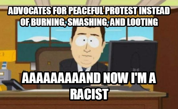 And It s Gone advocates for peaceful protest instead of burning, smashing, and looting aaaaaaaaand now i m a racist , made with livememe meme creator