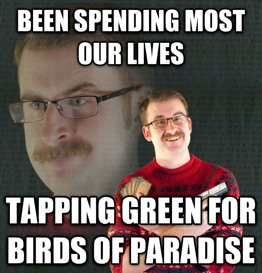 Psychotic MTG Player been spending most our lives tapping green for birds of paradise , made with livememe meme generator