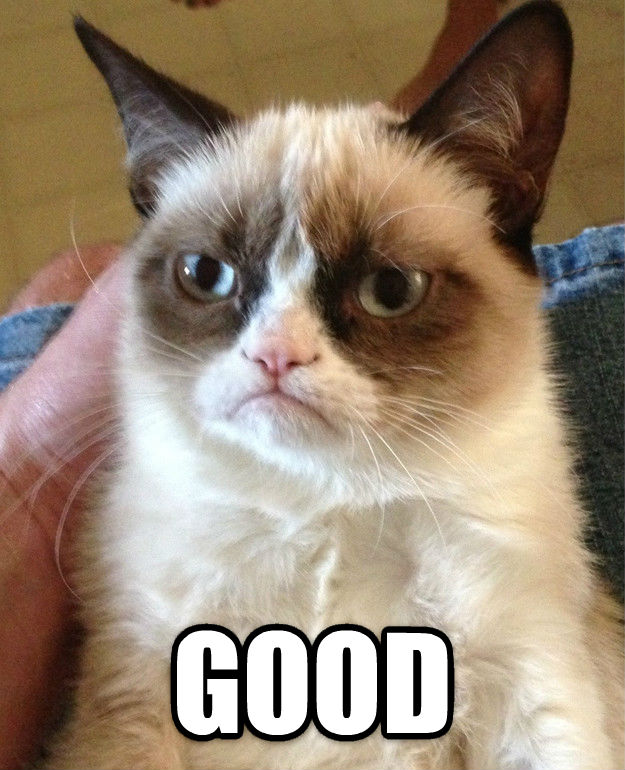 Grumpy Cat  good , made with livememe meme maker
