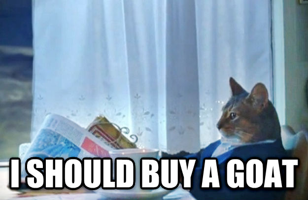 Sophisticated Cat  i should buy a goat , made with livememe meme creator