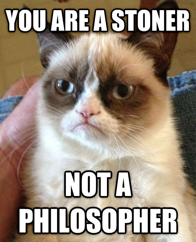 Grumpy Cat you are a stoner not a philosopher , made with livememe meme maker
