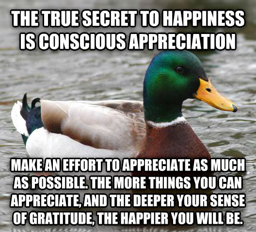 Actual Advice Mallard the true secret to happiness is conscious appreciation make an effort to appreciate as much as possible. the more things you can appreciate, and the deeper your sense of gratitude, the happier you will be. , made with livememe meme generator