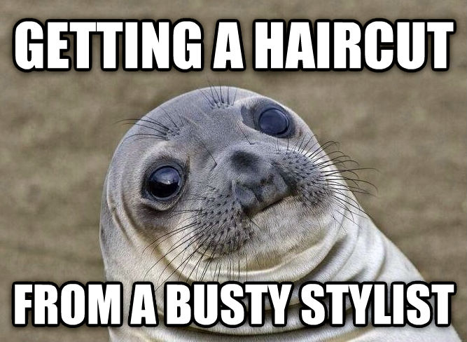 Uncomfortable Situation Seal getting a haircut from a busty stylist  , made with livememe meme generator