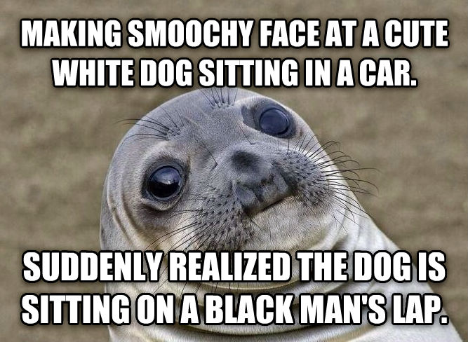 Uncomfortable Situation Seal making smoochy face at a cute white dog sitting in a car. suddenly realized the dog is sitting on a black man s lap. , made with livememe meme generator
