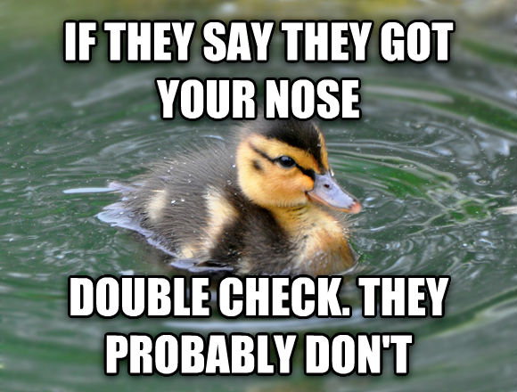 Almost Advice Mallard if they say they got your nose double check. they probably don t , made with livememe meme generator