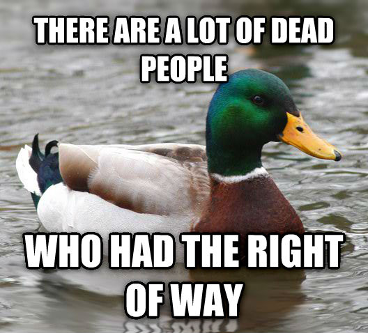 Actual Advice Mallard there are a lot of dead people who had the right of way , made with livememe meme generator