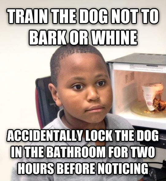 Minor Mistake Marvin train the dog not to bark or whine accidentally lock the dog in the bathroom for two hours before noticing , made with livememe meme creator