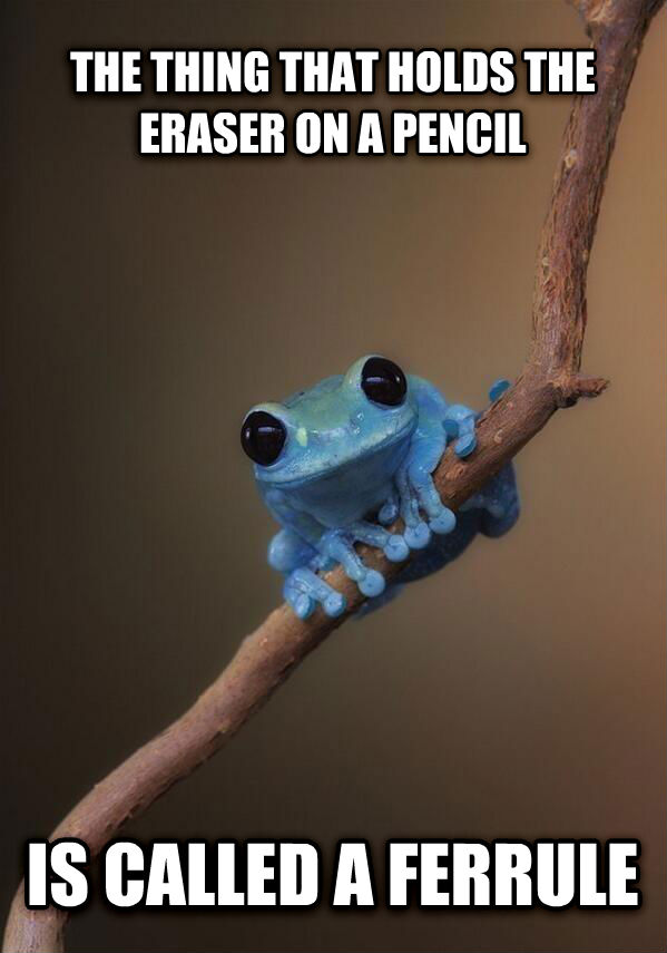 TIny Fact Frog the thing that holds the eraser on a pencil is called a ferrule , made with livememe meme generator