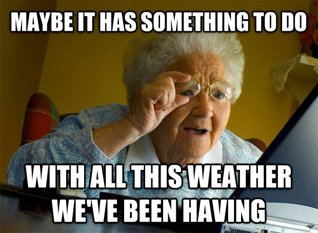 Grandma Finds the Internet maybe it has something to do with all this weather we ve been having , made with livememe meme maker