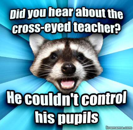 lame pun raccoon - photo #11