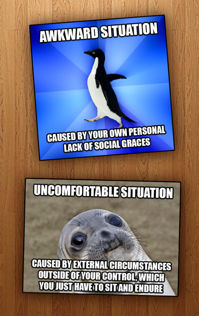 Penguin and Seal Difference   , made with livememe meme creator