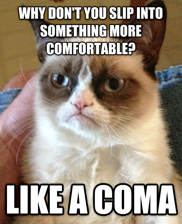 Grumpy Cat why don t you slip into something more comfortable? like a coma , made with livememe meme maker