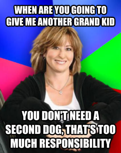 Sheltering Suburban Mom when are you going to give me another grand kid you don t need a second dog, that s too much responsibility  , made with livememe meme creator