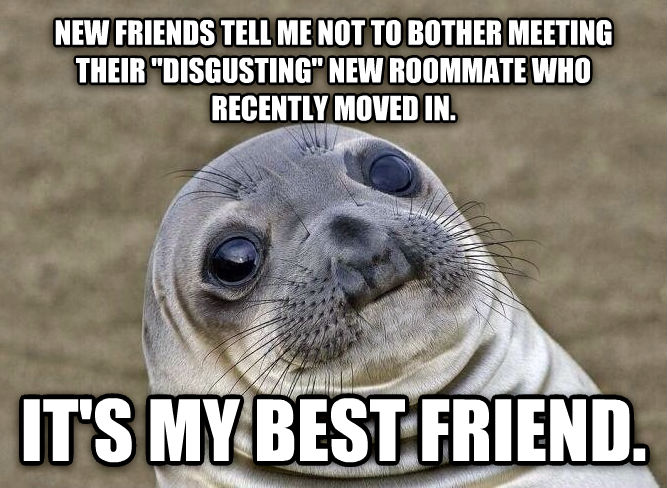 Uncomfortable Situation Seal new friends tell me not to bother meeting their  disgusting  new roommate who recently moved in. it s my best friend. , made with livememe meme generator