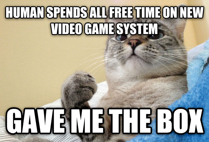 Success Cat human spends all free time on new video game system gave me the box , made with livememe meme creator