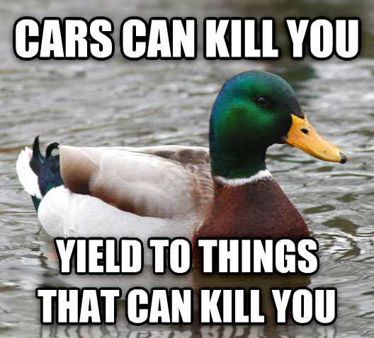 Actual Advice Mallard cars can kill you yield to things that can kill you , made with livememe meme creator