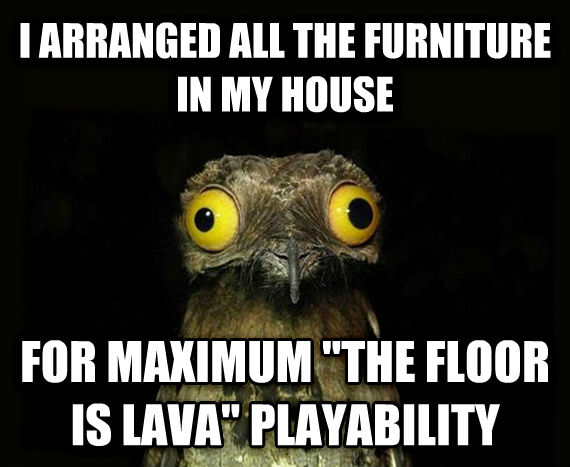 Weird Stuff I Do Potoo i arranged all the furniture in my house for maximum  the floor is lava  playability , made with livememe meme creator