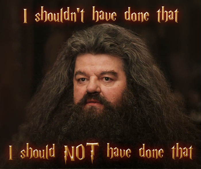 Hagrid Should Not Have Downloaded The Harry Potter Font   , made with livememe meme maker