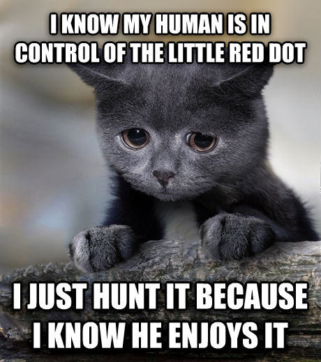 Confession Cat i know my human is in control of the little red dot i just hunt it because i know he enjoys it , made with livememe meme generator
