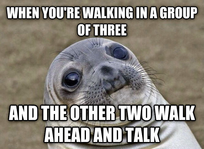 Uncomfortable Situation Seal when you re walking in a group of three and the other two walk ahead and talk , made with livememe meme generator