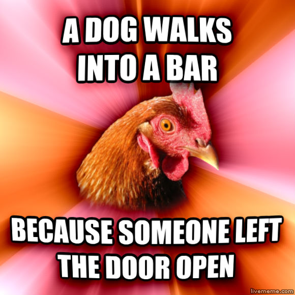 Anti-Joke Chicken a dog walks into a bar because someone left the door open  , made with livememe meme maker