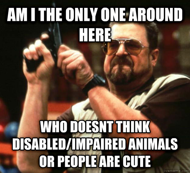 Angry Walter am i the only one around here who doesnt think disabled/impaired animals or people are cute , made with livememe meme creator