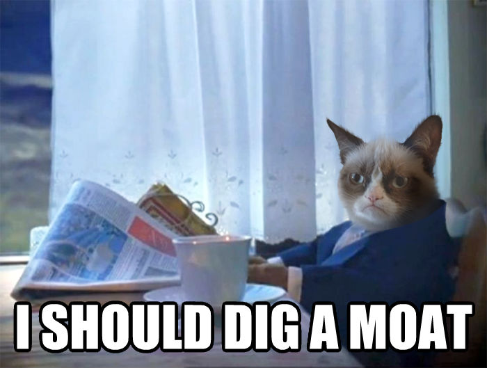 Introspective Grumpy Cat  i should dig a moat , made with livememe meme maker