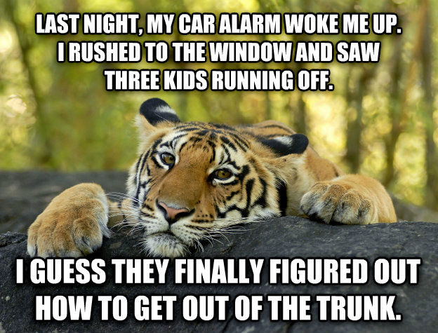 Terrible Twist Tiger last night, my car alarm woke me up. i rushed to the window and saw three kids running off. i guess they finally figured out how to get out of the trunk. , made with livememe meme generator