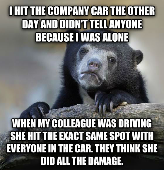 Confession Bear i hit the company car the other day and didn t tell anyone because i was alone when my colleague was driving she hit the exact same spot with everyone in the car. they think she did all the damage. , made with livememe meme maker