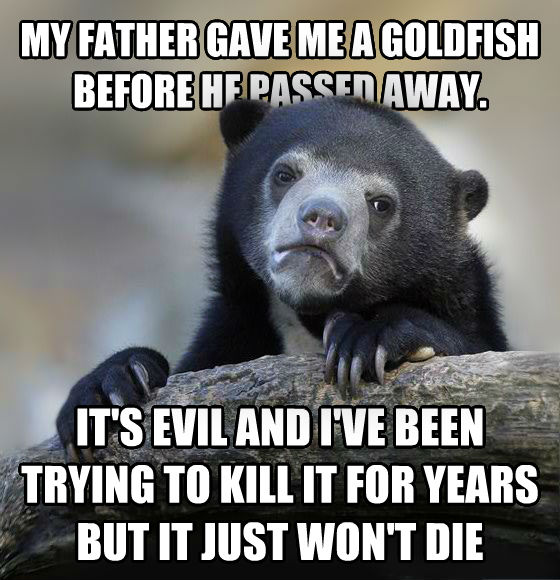 Confession Bear my father gave me a goldfish before he passed away. it s evil and i ve been trying to kill it for years but it just won t die , made with livememe meme creator