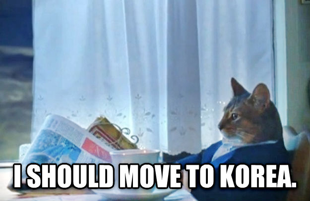 Sophisticated Cat  i should move to korea. , made with livememe meme maker