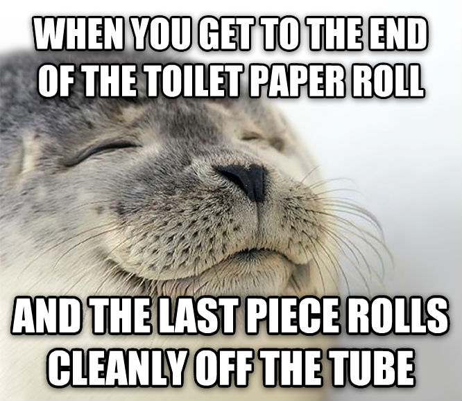 Seal of Approval when you get to the end of the toilet paper roll and the last piece rolls cleanly off the tube , made with livememe meme maker
