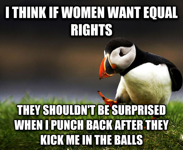 Unpopular Opinion Puffin i think if women want equal rights they shouldn t be surprised when i punch back after they kick me in the bells , made with livememe meme generator