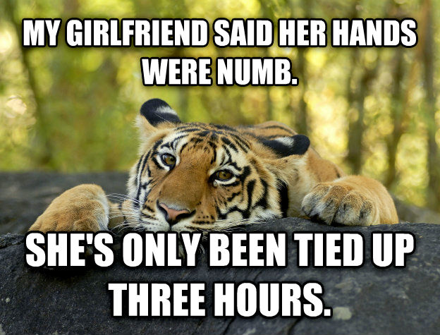 Terrible Twist Tiger my girlfriend said her hands were numb. she s only been tied up three hours. , made with livememe meme creator