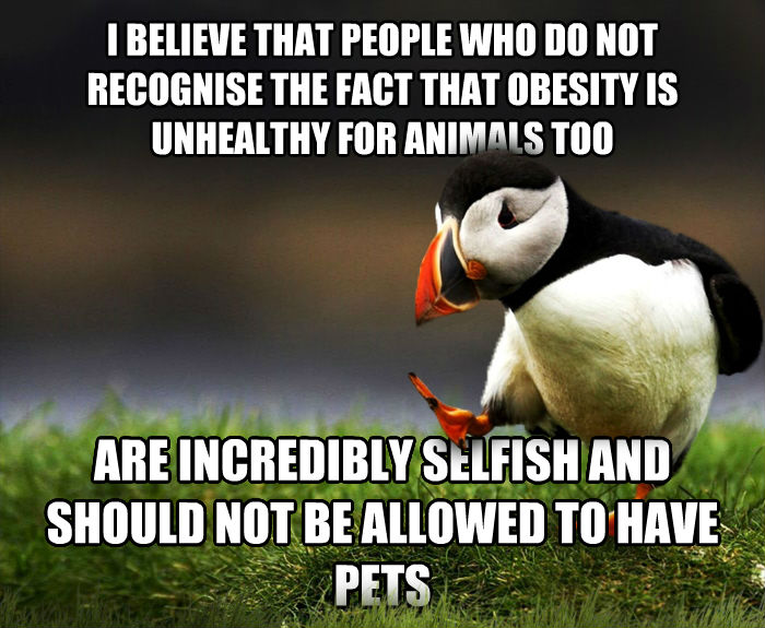 Unpopular Opinion Puffin i believe that people who do not recognise the fact that obesity is unhealthy for animals too are incredibly selfish and should not be allowed to have pets , made with livememe meme generator