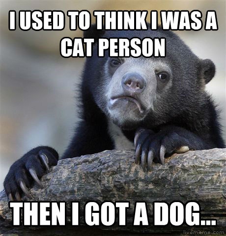 Confession Bear i used to think i was a cat person then i got a dog... , made with livememe meme maker