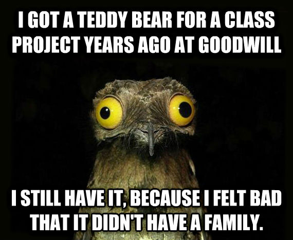 Weird Stuff I Do Potoo i got a teddy bear for a class project years ago at goodwill i still have it, because i felt bad that it didn t have a family. , made with livememe meme maker