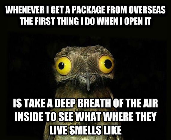 Weird Stuff I Do Potoo whenever i get a package from overseas the first thing i do when i open it is take a deep breath of the air inside to see what where they live smells like , made with livememe meme creator