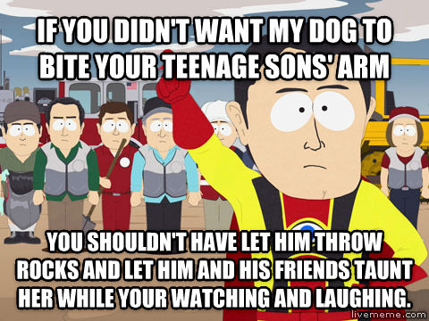 Captain Hindsight if you didn t want my dog to bite your teenage sons  arm you shouldn t have let him throw rocks and let him and his friends taunt her while your watching and laughing. , made with livememe meme creator