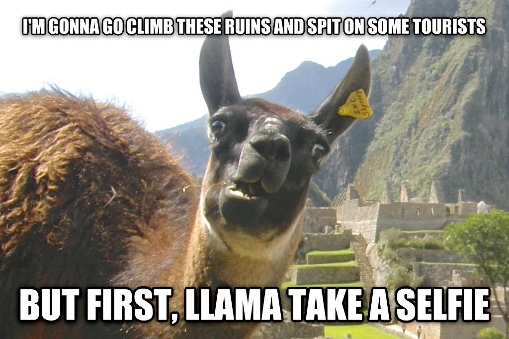 Lamentable Llama i m gonna go climb these ruins and spit on some tourists but first, llama take a selfie , made with livememe meme creator