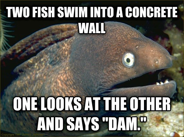Bad Joke Eel two fish swim into a concrete wall one looks at the other and says  dam.  , made with livememe meme creator