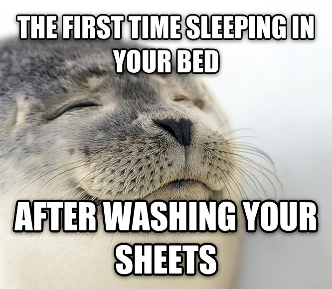 Seal of Approval the first time sleeping in your bed after washing your sheets , made with livememe meme generator