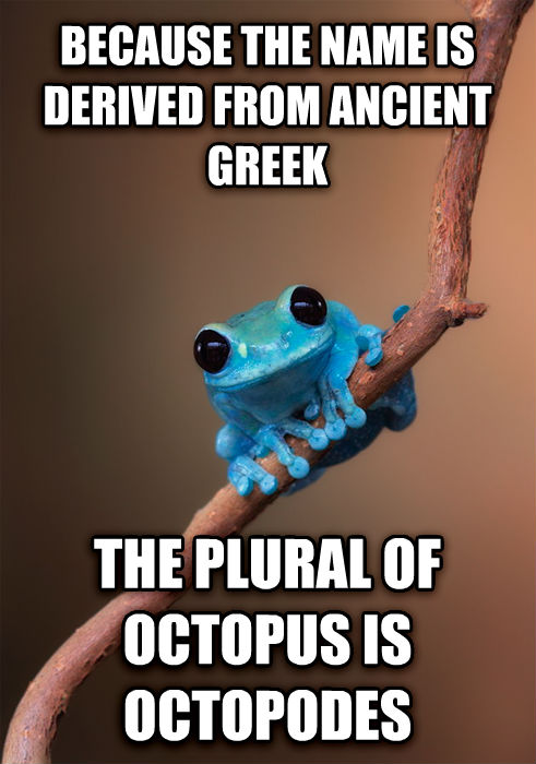 Small Fact Frog because the name is derived from ancient greek the plural of octopus is octopodes , made with livememe meme creator