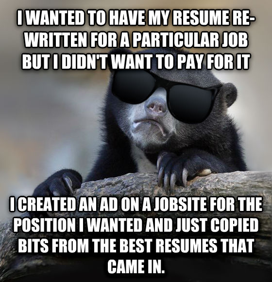 Confession Bear With Sunglasses i wanted to have my resume re-written for a particular job but i didn t want to pay for it i created an ad on a jobsite for the position i wanted and just copied bits from the best resumes that came in. , made with livememe meme creator