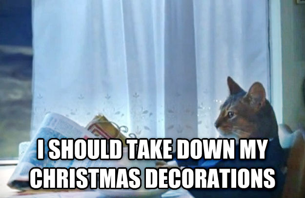 Sophisticated Cat  i should take down my christmas decorations , made with livememe meme maker