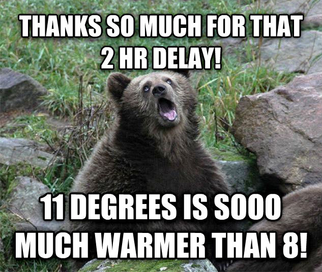 Sarcastic Bear thanks so much for that 2 hr delay! 11 degrees is sooo much warmer than 8! , made with livememe meme generator