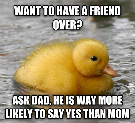 Baby Advice Mallard want to have a friend over? ask dad, he is way more likely to say yes than mom , made with livememe meme generator