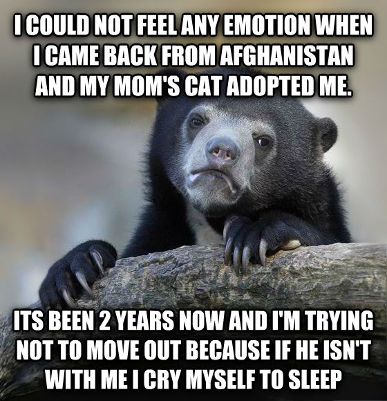 Confession Bear i could not feel any emotion when i came back form afghanistan and my moms cat adopted me. its be 2 years now and i m trying not to move out because if he isn t with me i cry my self to sleep , made with livememe meme generator